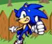 Sonic in Garden
