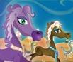Pony Racing