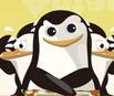 Penguin Escape Back To Antarctic