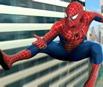 Spider-Man 2 - Web of Words