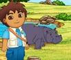 Diego's Hippopotamus Adventure