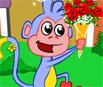 Dora V Flower