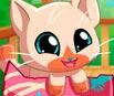 My Pocket Pets: Kitty Cat